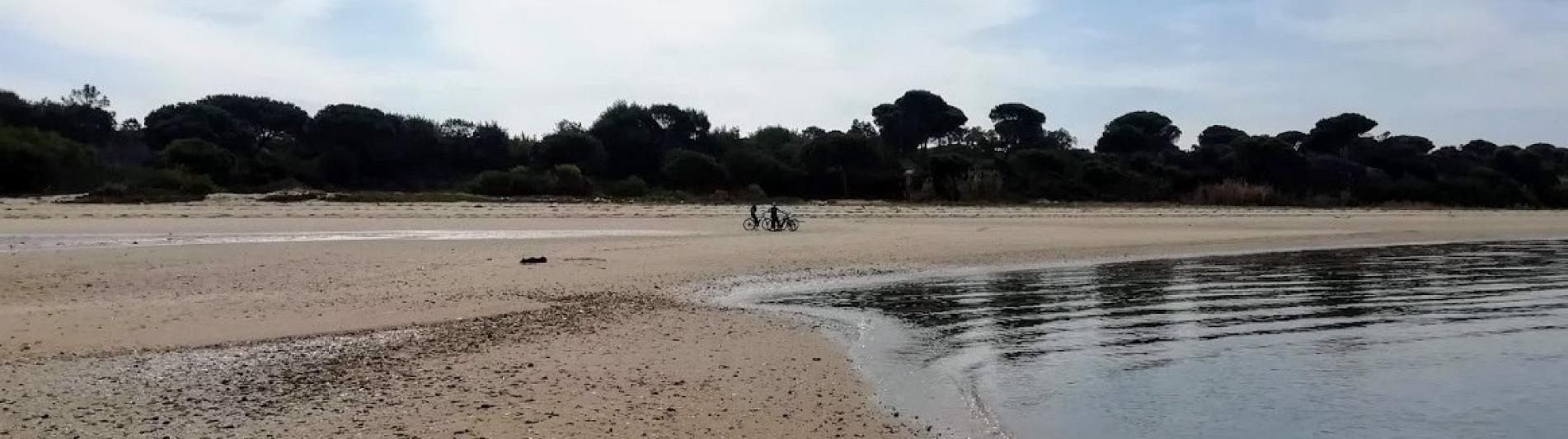 margem_sul-passeio_bicicleta-23
